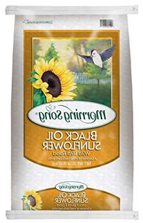 Morning Song 11407 Black Oil Sunflower Wild Bird Food, 20-