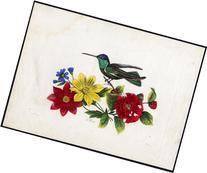 2 Extr. Rare Antique Prints-PROOF-MAGNIFICENT HUMMINGBIRD-