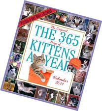 365 Kittens-a-Year 2014 Wall Calendar