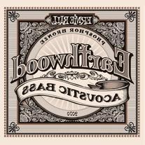 Ernie Ball Earthwood Phosphor Bronze Acoustic Bass Set .045