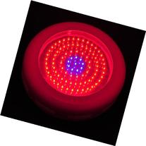 LEDwholesalers 2506MX Blue/Red 90 x 1 Watt LED High Power