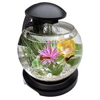Tetra Waterfall Globe Kit 1.8 Gallons, Aquarium With
