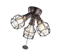 Kichler 370041 Fan Light Kits Fan Accessories; Oil Brushed