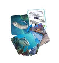 Animal Planet 3D Flash Cards - Marine Animals