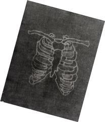 Bones - Invert