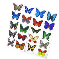 Premium Butterfly Stickers, Decals - For Cards, Envelopes,
