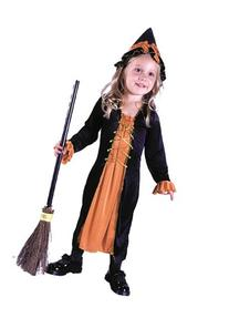 Costumes For All Occasions Fw9745 Renaissance Witch Toddler