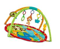 EMILYSTORES Baby Activity Play Gym Mats 30 x 30 Inch, Zoo