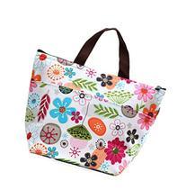 DOOPOOTOO Waterproof Picnic Lunch Bag Case Tote Reusable