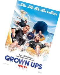 Grown Ups by postersdepeliculas
