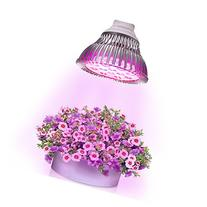 VastBright E27 12W Hydroponic LED Grow Light- 12 LEDS