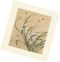 INK WASH Modern Chinese White Orchids Orchid Flower