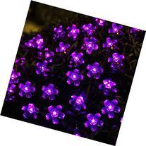 Innoo Tech Solar Outdoor String Lights 21ft 50 LED Purple