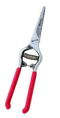 Corona FS 4310 Houseplant Shear, 1-1/4-Inch