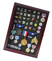 Collector Medal/Lapel Pin Display Case Holder Cabinet Shadow