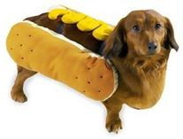 "MEDIUM - MUSTARD - Hot Dog Halloween Costume - 12"" to 16"