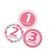 'MuchMore' Baby Monthly Stickers for Girl, Bodysuit Stickers