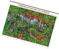Northeast Deciduous Forest Pane of Ten 37 Cent Stamps Scott
