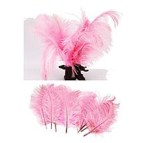 Pack Of 20, Ostrich Feathers For Home Decor Party Wedding