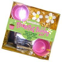 Sassafras / Flower Pot Pudding Kit