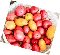 Seed Potato Mix, 5 lbs. Certified Seed Non GMO Red Pontiacs