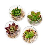 Set of 4 Decorative Mini Modern Design Clear Round