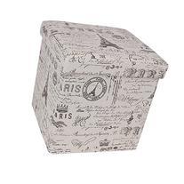 SONGMICS Storage Ottoman Cube/Footrest Stool/Puppy Step,