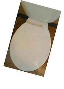 Standard Round 173-0425-000 Slow Close Toilet Seat, White