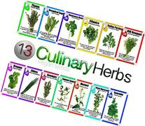 VeganSeeds Culinary Herb Set - 13 Packets of High Quality