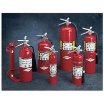 Amerex 2 1/2 Pound Abc Dry Chemical Fire Extinguisher