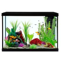 Grreat Choice® Aquarium Starter Kit size: 20 Gal