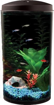 Koller Products AquaView 6-Gallon 360 Fish Tank with Power