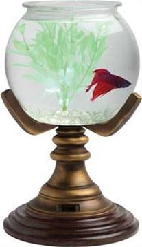 Aquarius OT1003 Betta Treasures 1-Gallon Royal Aquarium