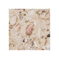 Arag Alive West Caribbean Sand 2/20 Lb Bags