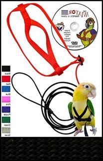 The AVIATOR Pet Bird Harness and Leash: Medium Black