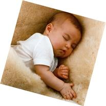 Baby's Lambskin Short-Shorn Wool Sleep Pad from Australia