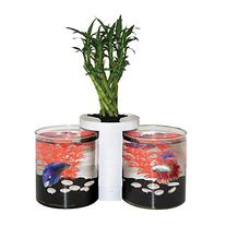 Elive Betta Cylinder Aquarium & Planter White