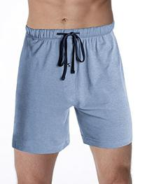 Hanes Men's Logo Knit Shorts 2-Pack Chambre Blue Heather-