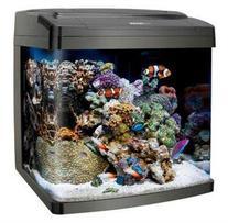 Coralife Biocube, Size 14
