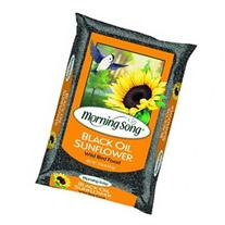 Morning Song Black Oil Sunflower, 10-Pound