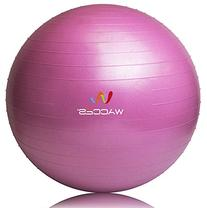 Wacces Total Body Balance Ball Kit, Fitness Exercise