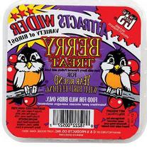 C and S Products CS12527  Berry Treat Suet for Year Round