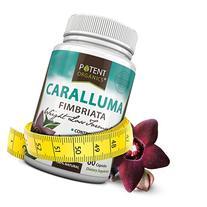 Potent Organics Caralluma Fimbriata Extract - 1200mg  - 60