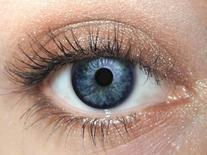Cardamom Eye Makeup Eye Shadow Eyeliner- THE BEST Woody