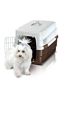 IMAC Carry60 Pet Carrier, Mixed Colors
