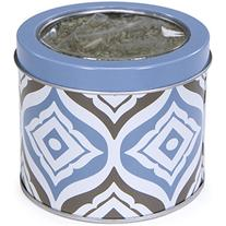 Kathy Ireland Loved Ones Catnip Canister with Organic Catnip