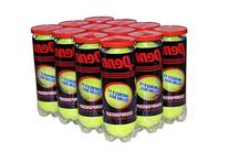 Penn Championship Regular Duty Tennis Balls