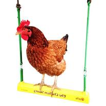 Fowl Play Products, The Chicken Swing, Chicken Toy ,13100,