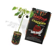Chocolate Habanero Pepper - All-included-planter-kit . Just