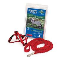 PetSafe Come With Me Kitty Harness and Bungee Leash, Medium